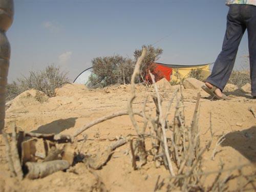 044_negev desert10